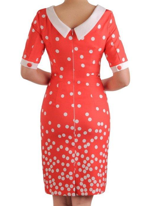 Sukienka w groszki, wiosenna kreacja w prostym fasonie 19778.
